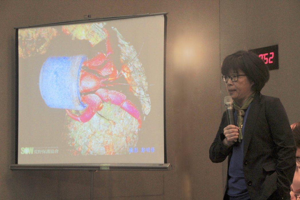 荒野保護協會理事長劉月梅邀請大家減「塑」生活,減少對大自然的迫害,圖為寄居蟹以人...