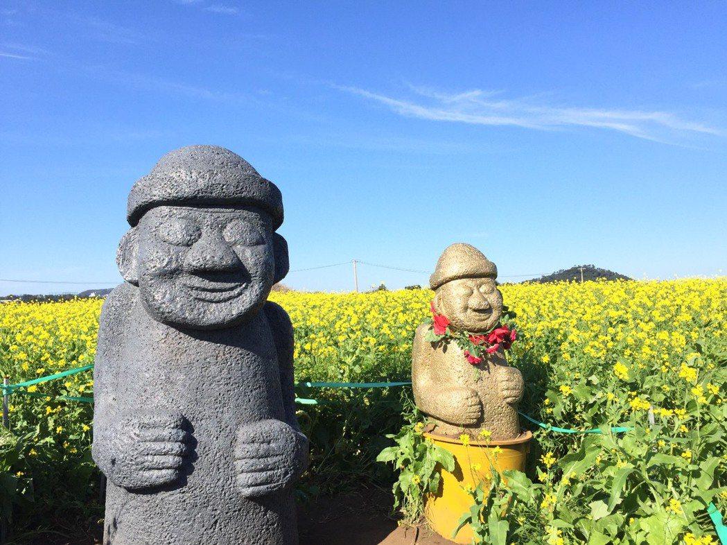 石頭爺爺與油菜花,均是濟州島觀光的代表性產物。濟州觀光公社資料照