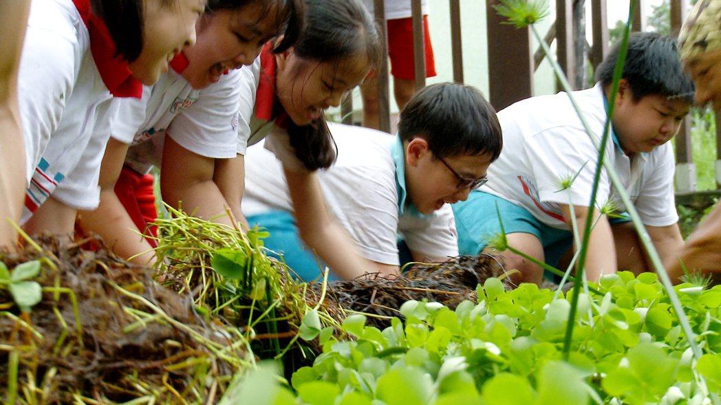 台灣師範大學師生、串連13所大學與13所國小合作「幸福校園計畫」,拍攝8部科普短...