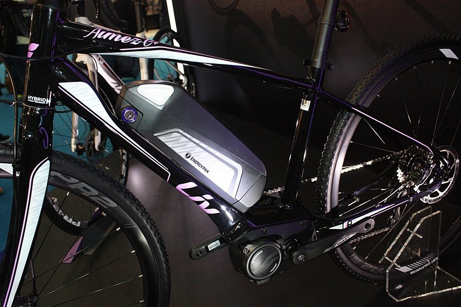 Aimez E+電動自行車電池。 記者林和謙/攝影