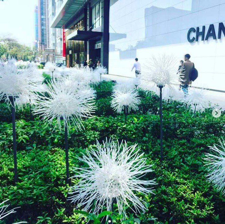 新光三越A4花圃的「春的蒲公英」,充滿清新美。圖/摘自Instagram