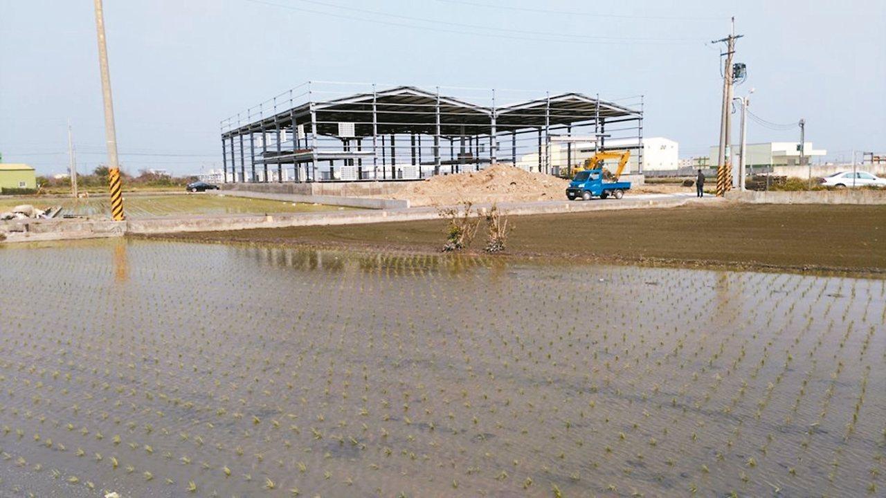 彰化縣鹿港鎮疑似非法新增建建物。 地球公民基金會/提供