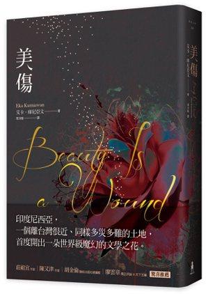 書名:《美傷》作者: 艾卡‧庫尼亞文譯者:周沛郁出版社:木馬文化...