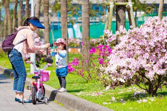 走向戶外賞杜鵑花之餘,別錯過周邊的特色景點。(圖/達志影像提供)