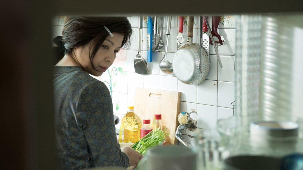 楊貴媚飾演「媽媽不見了」離家的媽媽。圖/民視提供