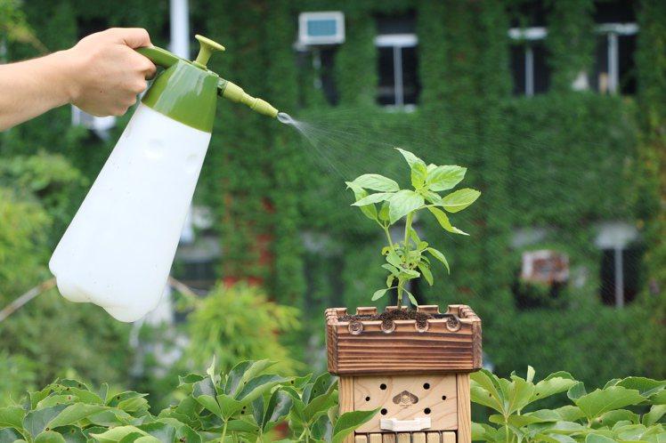 結合種花與獨居蜂旅館概念。圖/Melvita提供