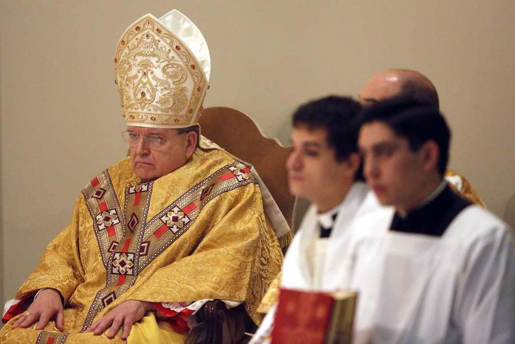 來自美國、有重要地位的保守派代表樞機主教伯克,認為教宗選擇接納難民絕對是個相當不...