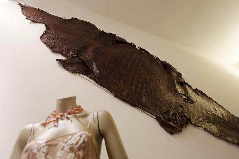 巨蜥、蟒蛇、鱷等動物的皮革經常被使用在錶帶、皮帶、皮鞋等配件與衣著上。輸出入這些...