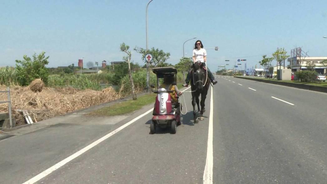 遊客騎馬逛大街,前方牽馬竟是一名坐著電動車的身障人士,很危險。 圖/讀者提供