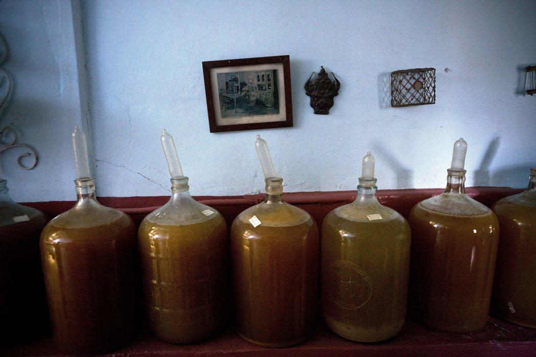 甕酒罐以保險套封口,就能知道釀酒的進度。(美聯社)