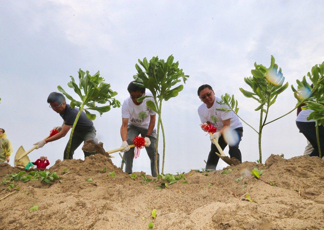 和泰集團舉辦「TOYOTA一車一樹」公益活動,由董事長黃南光(中)、總經理蘇純興(右)率領員工,在海邊種下樹苗。 記者許正宏/攝影