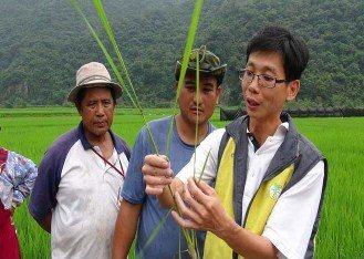 玉管處輔導原住民轉型有機種植,推出「玉山瓦拉米」。圖/玉管處提供
