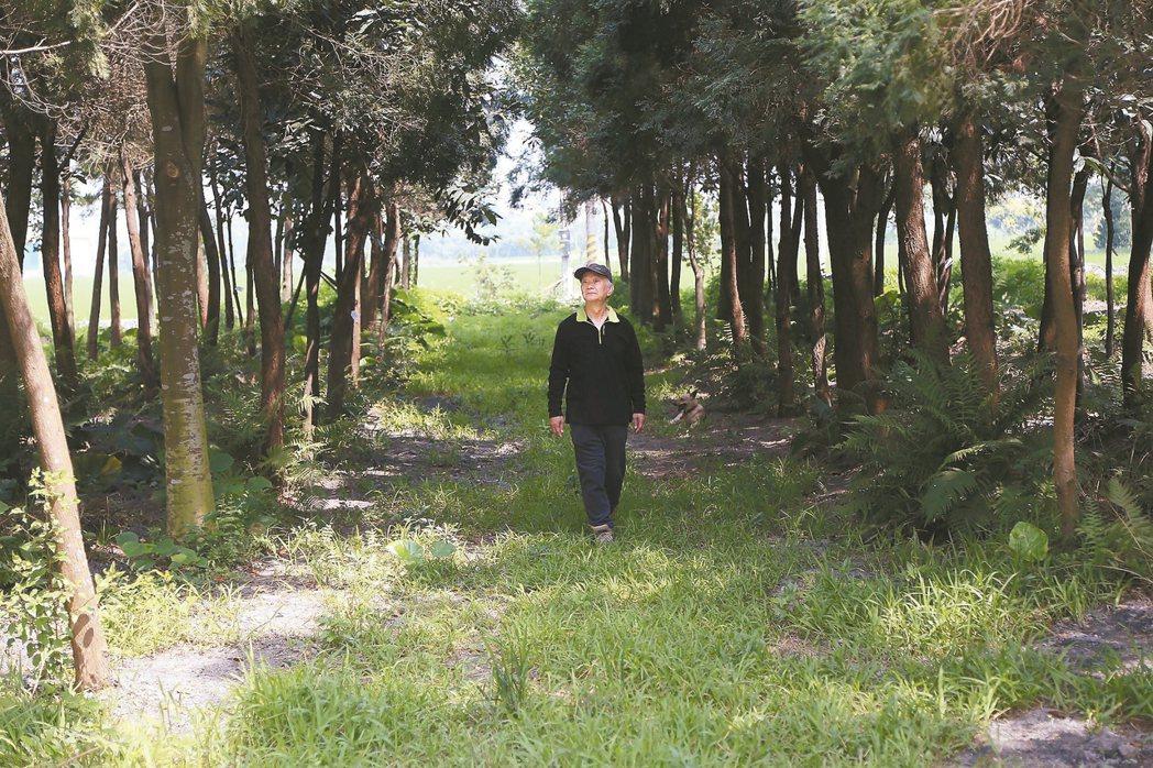 種樹的人──吳晟。 吳晟.圖片提供