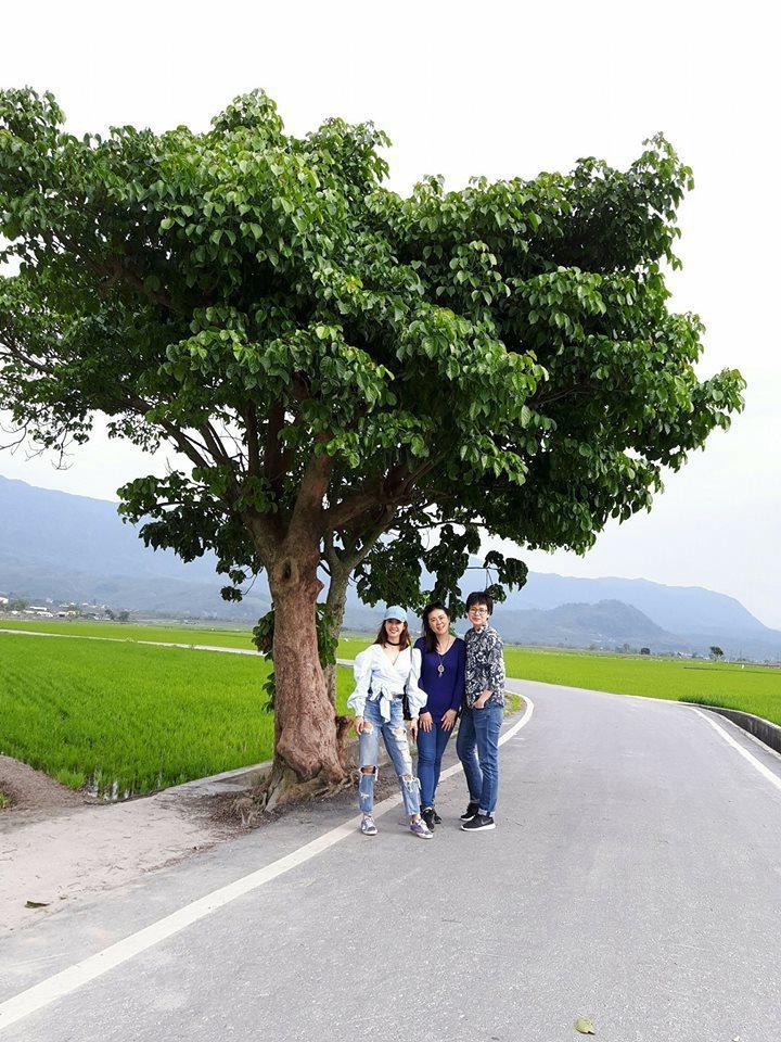 蔡依林在臉書貼文「找到了!屬於我們的樹」 。圖/翻攝自蔡依林臉書