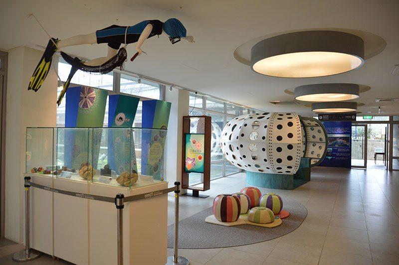 海洋科技博物館生動的海膽特展
