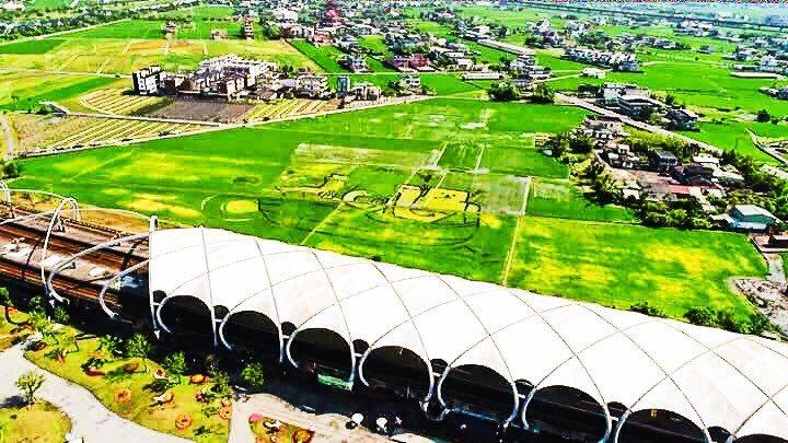 宜蘭綠色博覽會用稻作在冬山火車站農田裡種出一幅巨畫,攝影家稻草龍用空拍,捕捉壯觀...