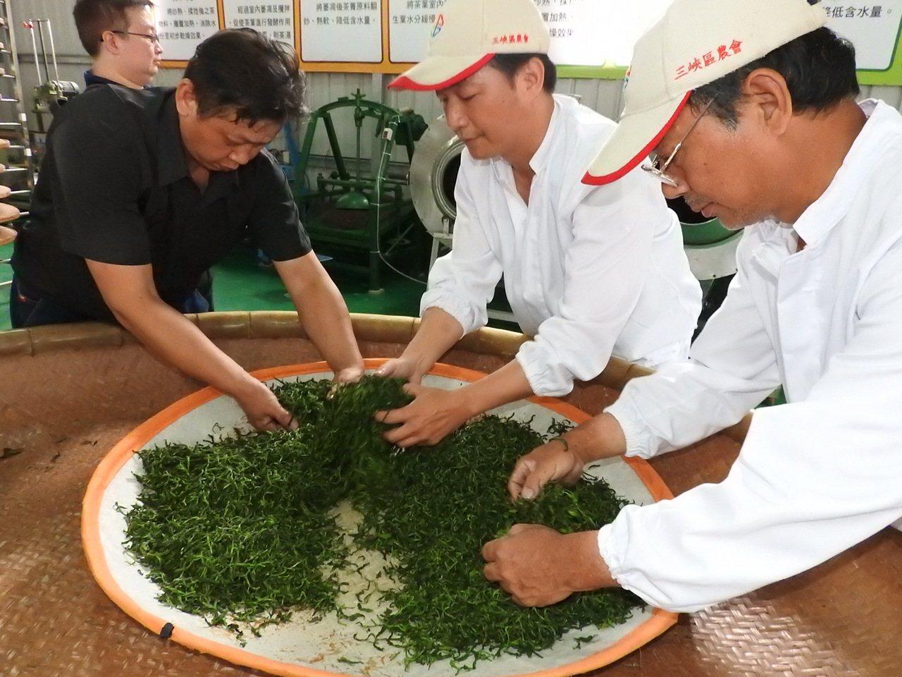 新北市三峽小暗坑6名茶農,5年多前轉型有機,更進一步結合當地螢火蟲生態,今天發表...