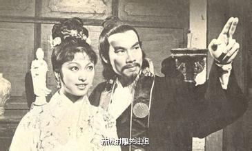 米雪與白彪繼續在佳視「神鵰俠侶」飾演中年黃蓉和郭靖。圖/摘自新浪微博