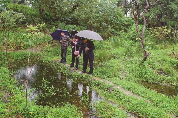 楊平世教授(右1 )對公園志工解說榮星花園公園的生態復育池。(攝影/黃建彬)