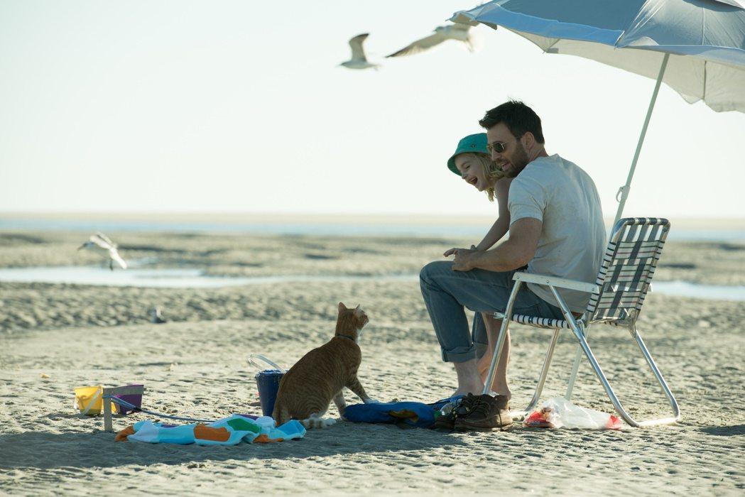 「美國隊長」克里斯伊凡卸下英雄外在,在新片「天才的禮物」飾演溫柔暖爸。圖/福斯提