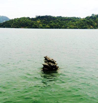日月潭水位頗高,九蛙幾乎看不見。 記者黑中亮/攝影