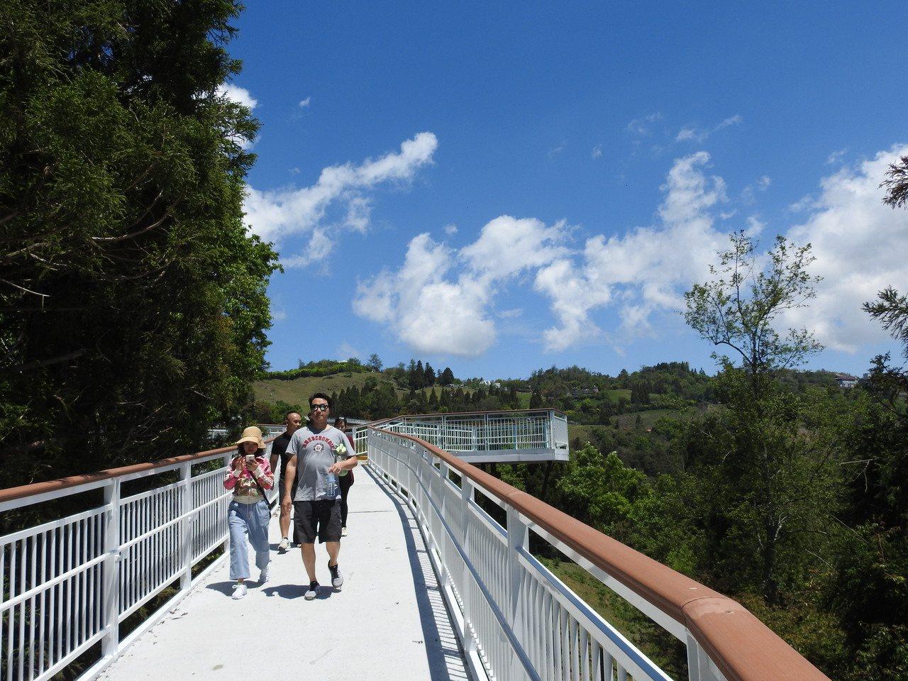 清境高空觀景步道純白蜿蜒,搭配高山綠樹和藍天白雲等景致,令人心曠神怡。記者賴香珊...