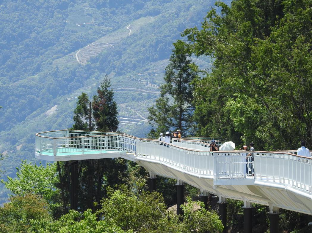 清境高空觀景步道純白蜿蜒,搭配高山綠樹等景致,令人心曠神怡。記者賴香珊/攝影