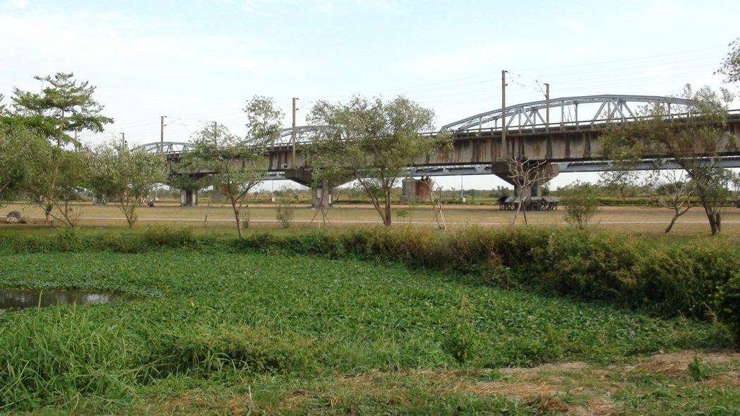 大樹舊鐵橋濕地園區占地140公頃,全區不設垃圾桶,日本團都吃驚。記者王昭月/攝影