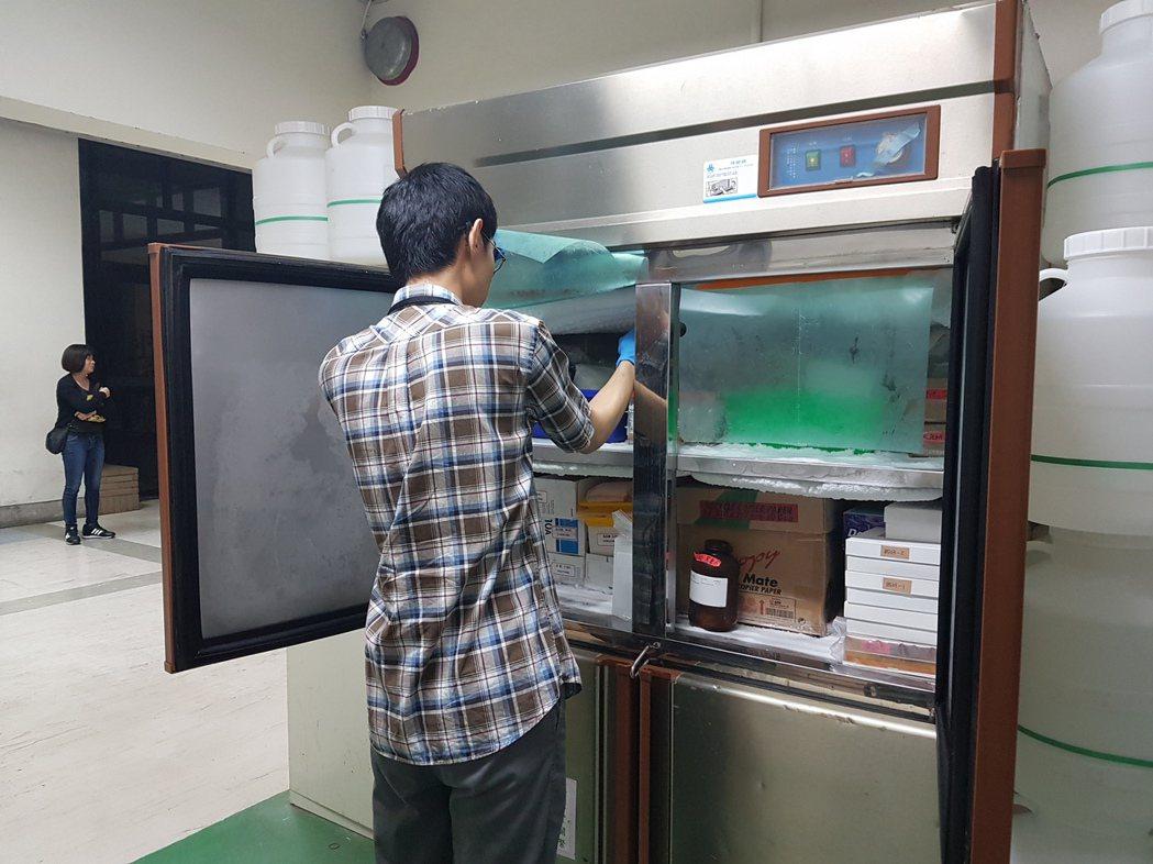 成大環境微量毒物中心,待驗的樣品堆滿冰箱。記者修瑞瑩/攝影