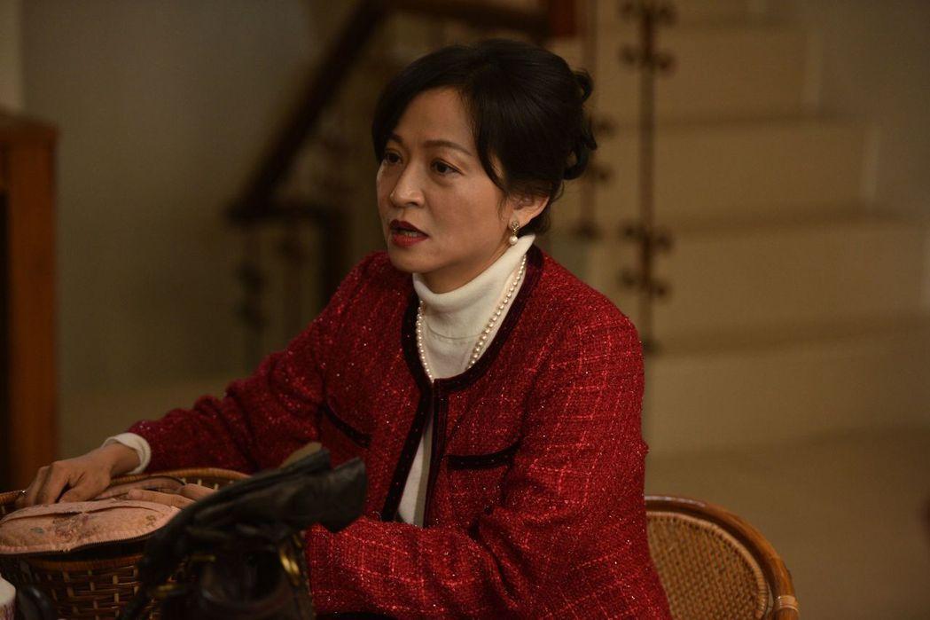 姚坤君在「妖精」戲中飾演一名家庭主婦。圖/台視提供