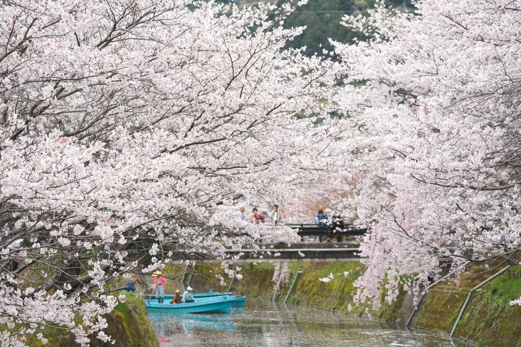 地位不滅!台灣人最愛旅遊目的地「日本」連3年冠軍
