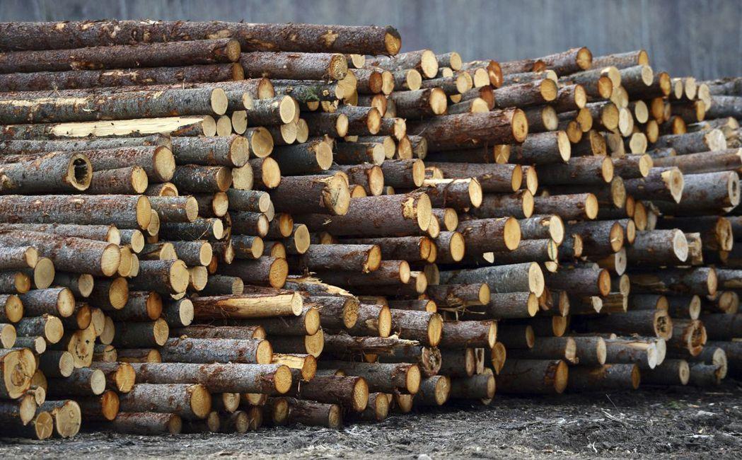 加拿大木材課徵反補貼稅,美國房屋造價將上升。 美聯社