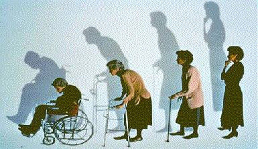 台南市立安南醫院表示,骨質疏鬆是沉默的殺手,也是僅於心血管的第二大疾病。 台南市...