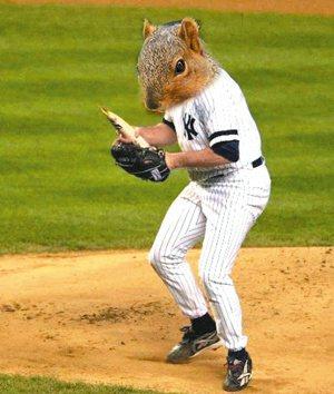 松鼠曾是2007年洋基球場的吉祥物。  取自網路