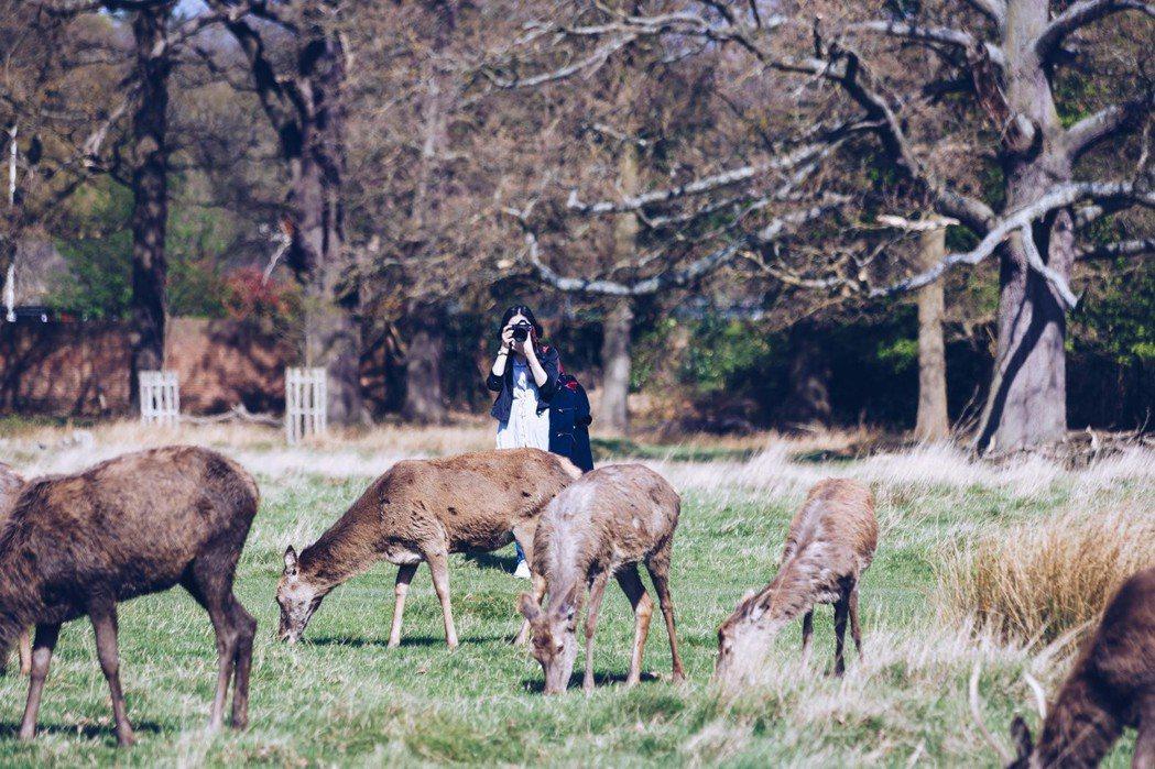 倫敦將「生物多樣性」作為市政重點之一。 圖/取自Davide D'Amico(C...