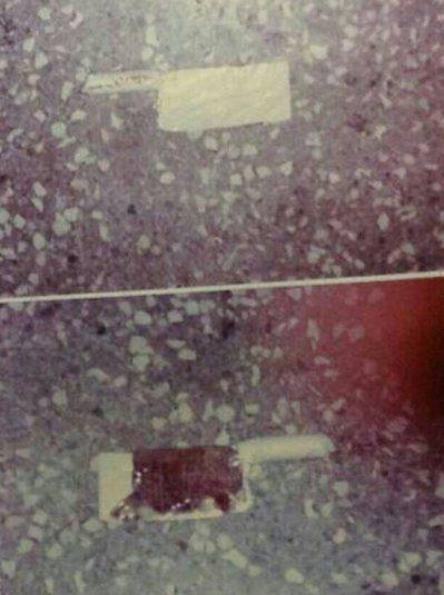 吳銘漢夫婦命案的凶刀不尋常地遭透明膠帶黏捆,吳家人律師聲請鑑定菜刀上的生物跡證,...