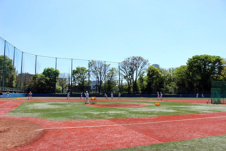 晴空萬里的東大棒球練習場,當年伊藤為了考上東大進棒球隊,曾在一旁的觀眾席當了好幾年的觀眾。 圖/取自東大野球部部落格