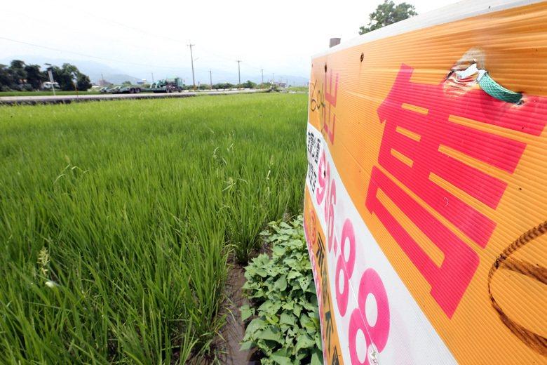 2000年農發條例,將農地保護政策目標改為「放寬農地農有,落實農地農用」。然而,...