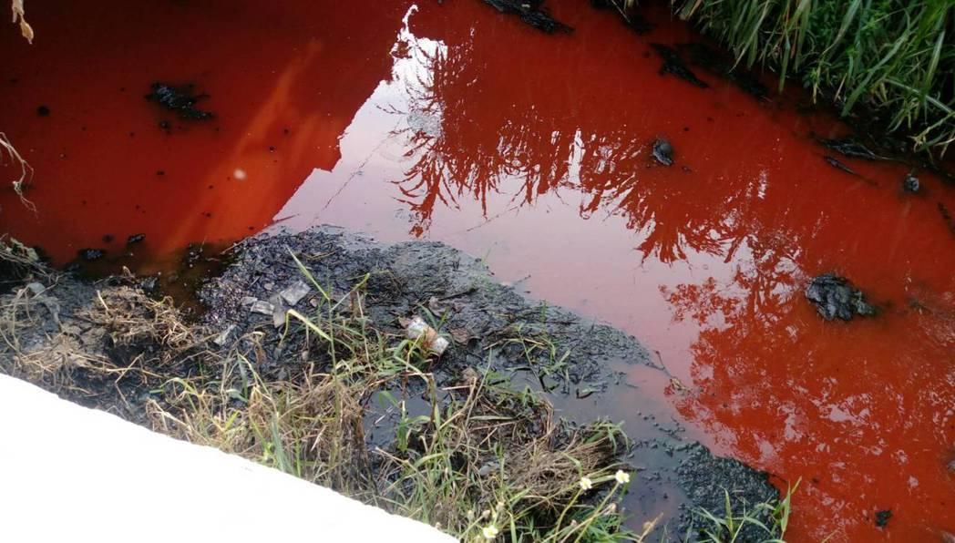 屏東市崁仔頂溝渠早上出現紅色水流。圖/蔣月惠議員提供