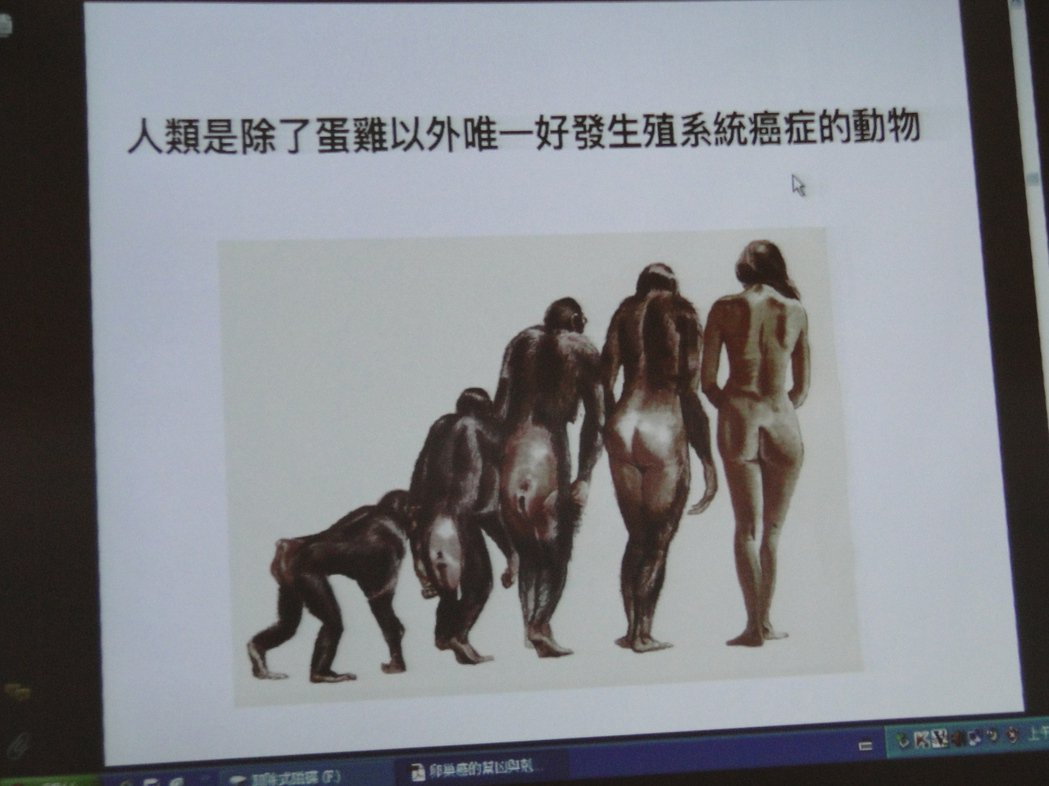 花蓮慈濟醫院婦產部主任朱堂元簡報時,聲稱人類是除了蛋雞外,唯一好發生殖系統癌症的...