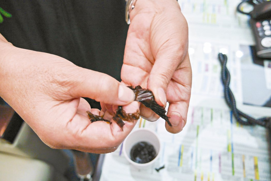 台南市議員郭秀珠將某賣場賣的紫菜泡水後,用力拉扯竟都不破,甚至用指甲也畫不破。 ...