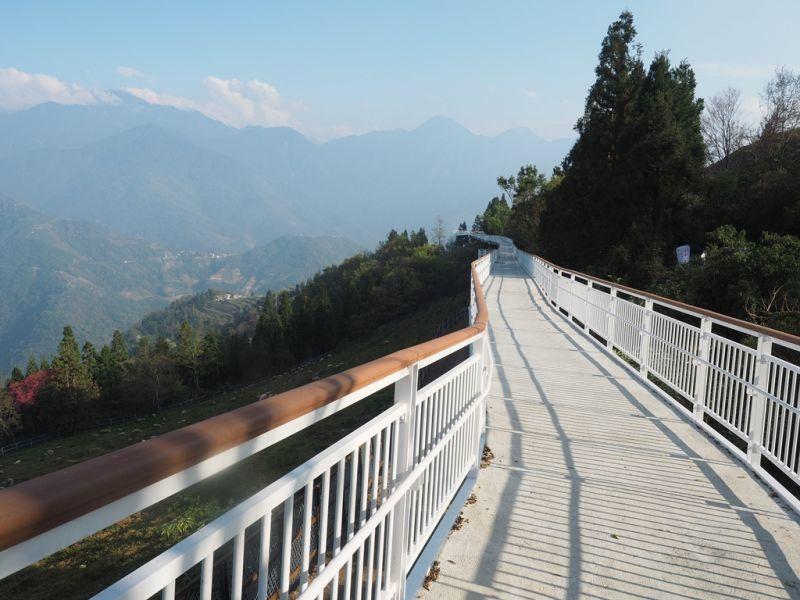 「清境天空步道」是號稱是全台最長的高架景觀步道(攝影/黃郁仁)