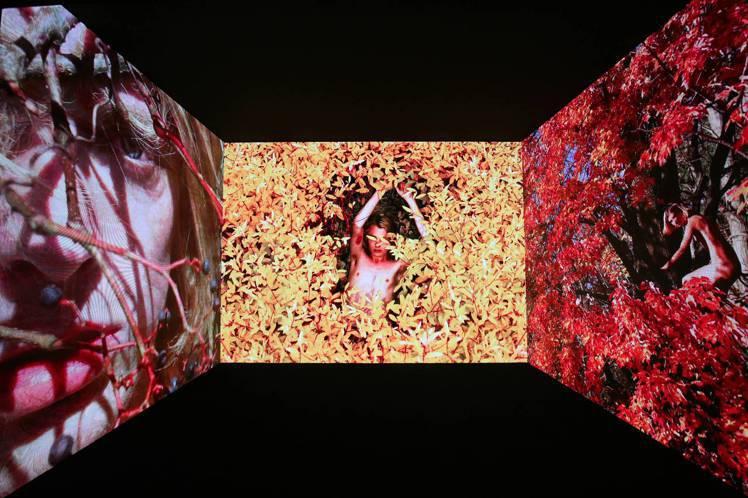 影像展廳更是用環繞螢幕讓參展民眾宛如身歷其境般,隨著畫面體驗流動、翻頁的動態效果...