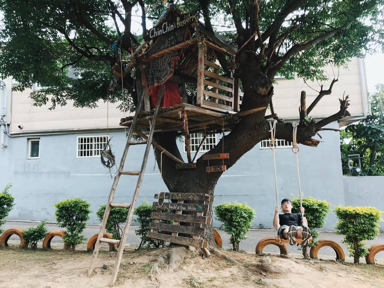 晴心樹。圖/達拉提供