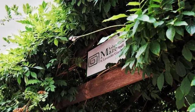 雅思迷宮花園。圖/澳洲維多利亞州旅遊局提供