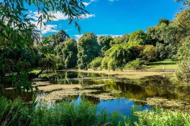 皇家植物園。圖/澳洲維多利亞州旅遊局提供