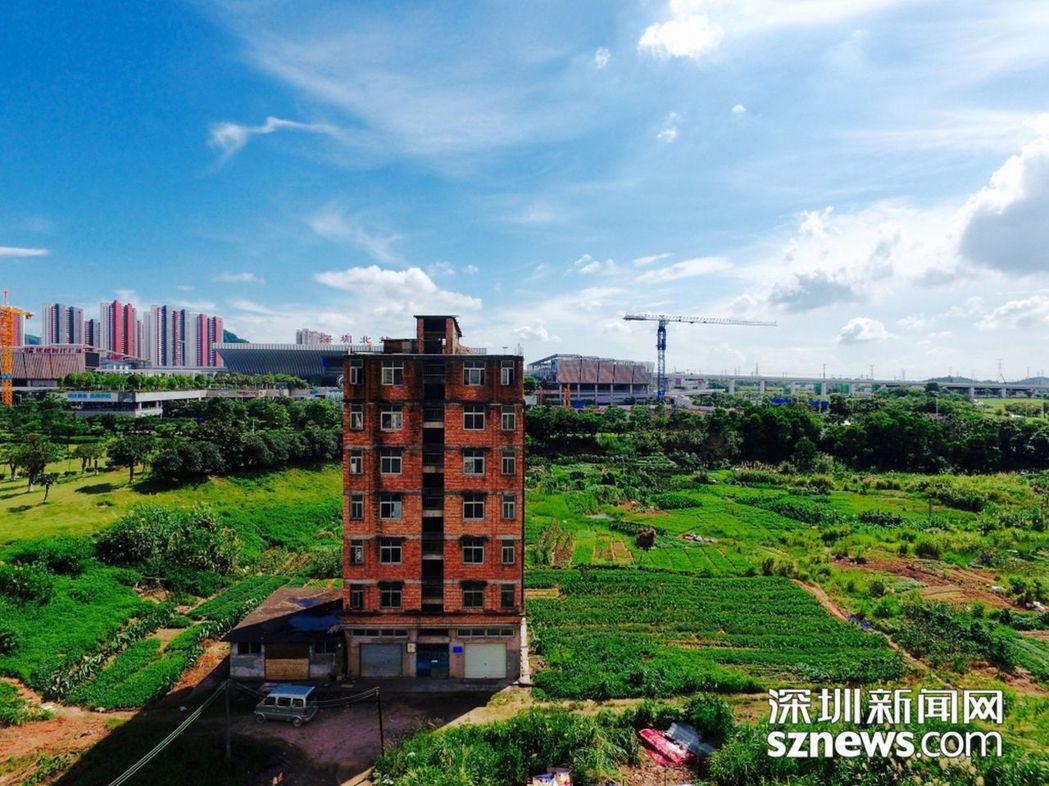 深圳最牛釘子戶終於開拆。(取材自深圳新聞網)