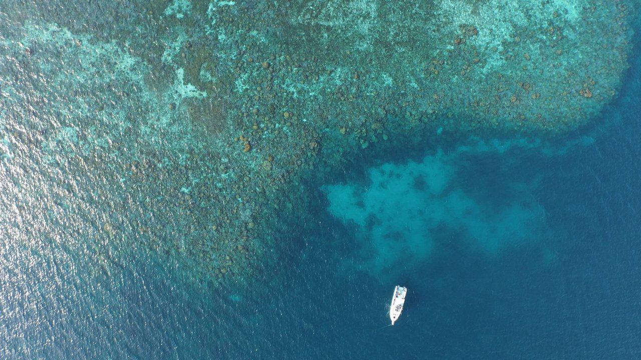 透過觀測東沙環礁骨骼氮含量比例,台大地質系助理教授任昊佳團隊首度直接證實人類排放...