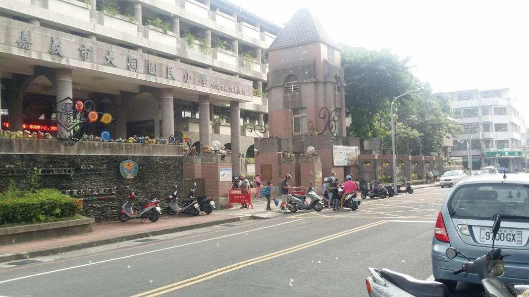 民眾投訴嘉市大同國小圍牆邊棉樹,棉絮導致過敏。記者林伯驊/攝影