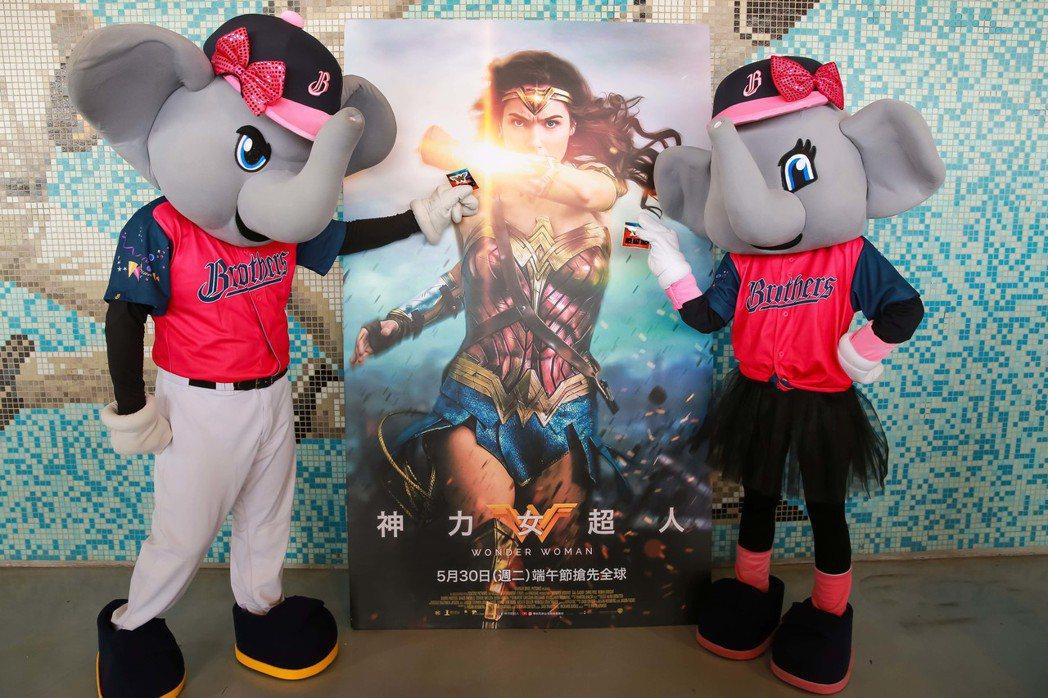 中時兄弟象棒球隊與神力女超人做跨界合作。圖/華納兄弟提供